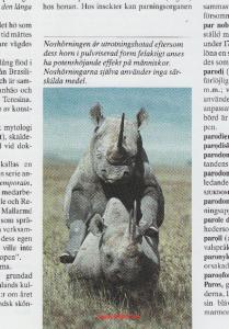 """Min favoritbildtext i Bra Böckers gröna lexikon, uppslagsord """"parning"""". (Lär vara skriven av Jan-Öyvind Swahn.)"""