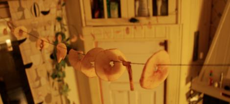 8. Häng upp äppelringar på björntråd kors och tvärs i hela köket tills de är torra och sega.