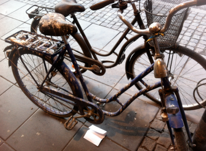 Cykel med fågelskit!