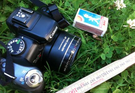 Vissa fotointresserade karlslokar kommer att ifrågasätta kameravalet. Men den stora, fina gick ju sönder förra sommaren. Och den nya, fina – som jag inte är kompis med – tappade sin batteriladdare på resan till Estland med min djefla man.