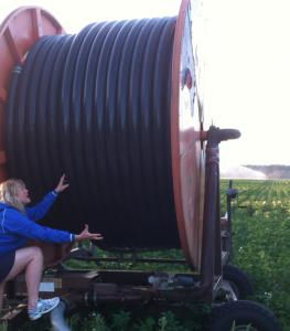 Jag hittade en gigantisk trådrulle.