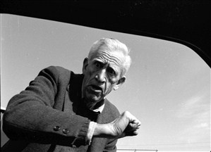 Här slår den skygge Salinger på fönsterrutan till en bil. Man kan ju tänka sig vad det berodde på.