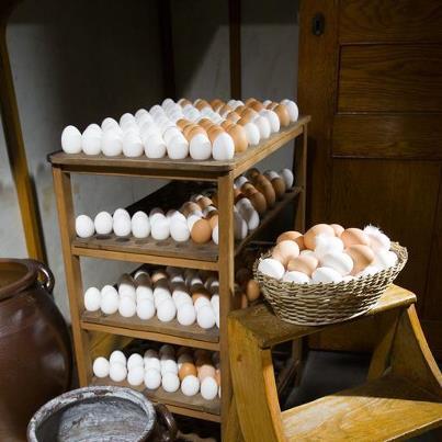 Den otroligt imponerande ägghyllan på Hallwylska palatset.