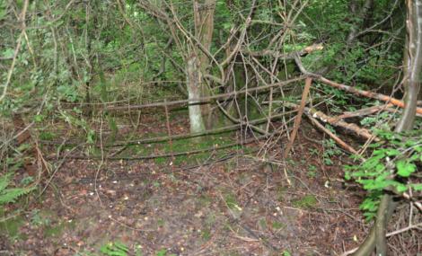 Vi hittade ett staket.