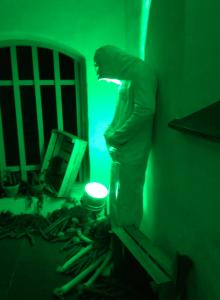 """""""Man och grönsaker i grönt ljus"""" kallar jag denna installation."""