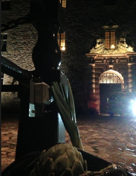 Sedan packade jag ihop fem kronärtskockor, tio sparrisar och en purjolök i handväskan och lät dem posera framför slottet.