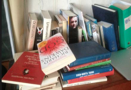 Sorterar bort alla högar med böcker som jag släpade fram till Julkalendern?