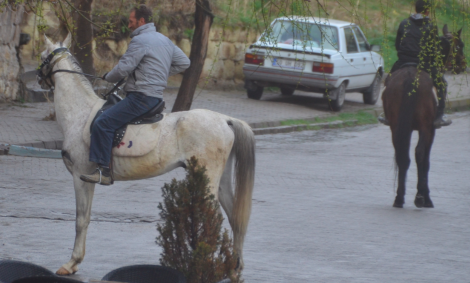 """Men en mager häst har jag sett. I Kappadokien – vars namn kommer från fornpersiskan och betyder """"landet med de vackra hästarna""""."""